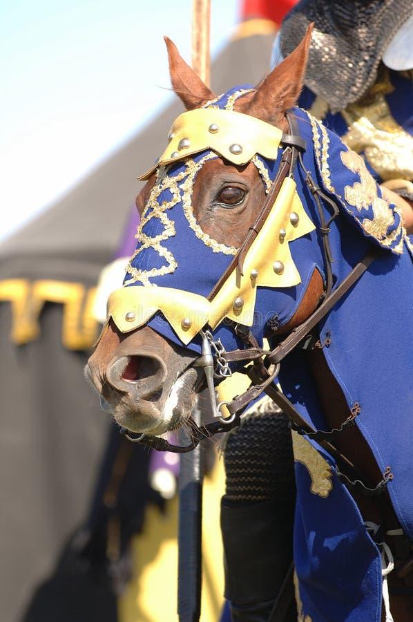 ιππότης 2 αλόγων στοκ εικόνα με δικαίωμα ελεύθερης χρήσης