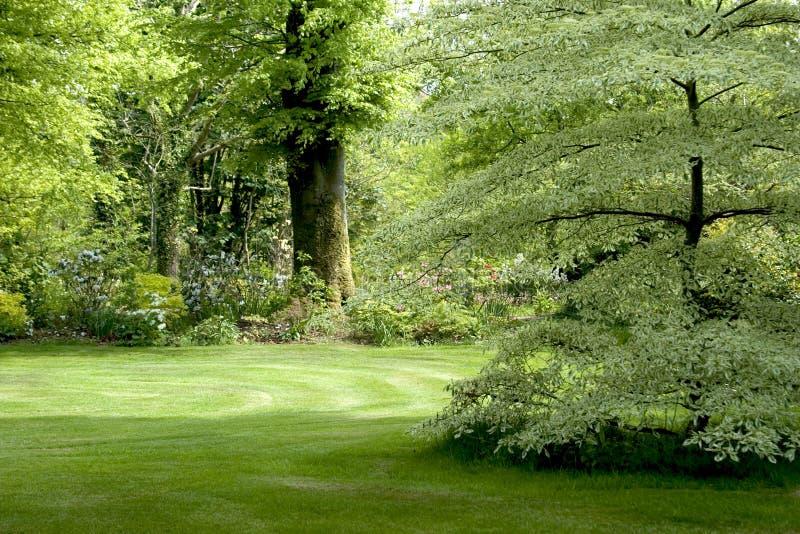 ιρλανδικός παραδοσιακός κήπων στοκ εικόνες