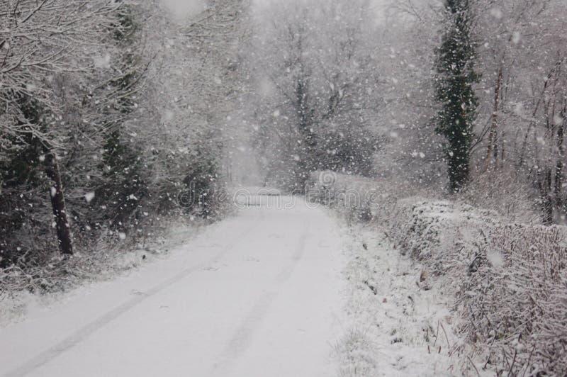 ιρλανδικός χειμώνας στοκ εικόνες