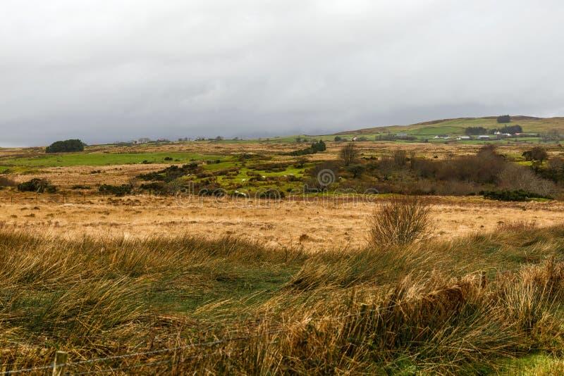 Ιρλανδικό τοπίο το χειμώνα στοκ φωτογραφία