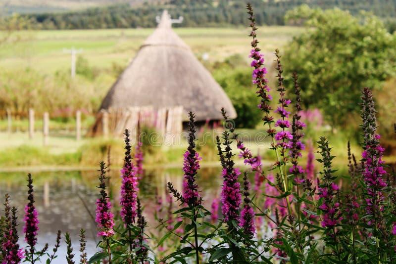 Ιρλανδικό Crannog στοκ φωτογραφίες με δικαίωμα ελεύθερης χρήσης
