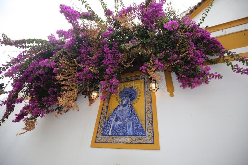 Ισπανία Στοιχεία ντεκόρ Λουλούδια ταξίδια Εικόνες των κεραμιδιών στοκ φωτογραφίες με δικαίωμα ελεύθερης χρήσης