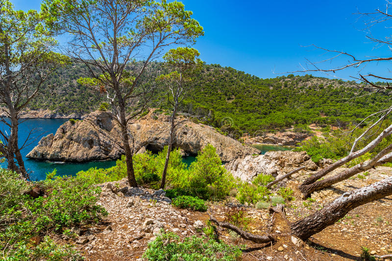 Ισπανία Majorca Cala Monjo, Μεσόγειος στοκ εικόνες
