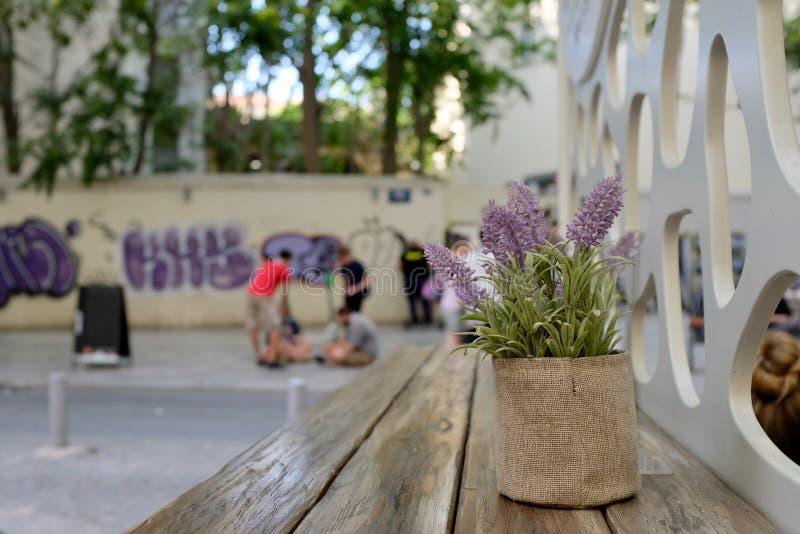 Ισπανικό Lavender στο διακοσμητικό δοχείο στοκ φωτογραφίες με δικαίωμα ελεύθερης χρήσης