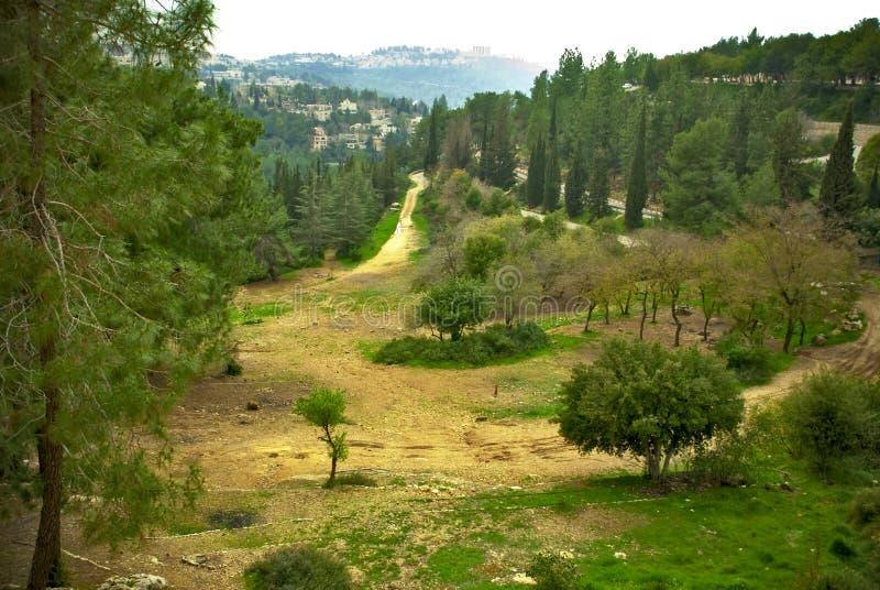 Ισραήλ Ιερουσαλήμ στοκ εικόνες