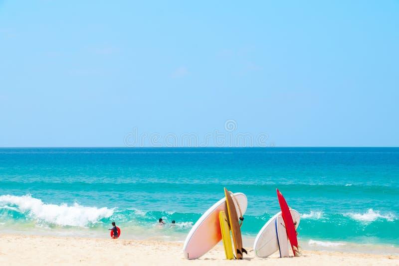 Ιστιοσανίδα στην τροπική παραλία άμμου με το κύμα θάλασσας και το υπόβαθρο μπλε ουρανού στοκ εικόνες με δικαίωμα ελεύθερης χρήσης