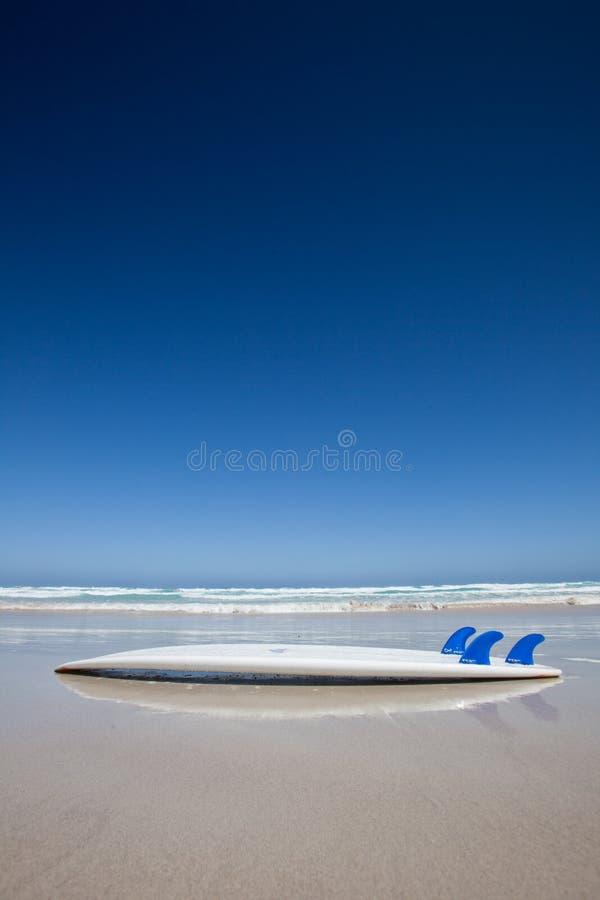 Ιστιοσανίδα σε μια παραλία Αυστραλοί στοκ φωτογραφία με δικαίωμα ελεύθερης χρήσης