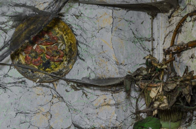 Ιστοί αράχνης σε έναν τοίχο στοκ εικόνες