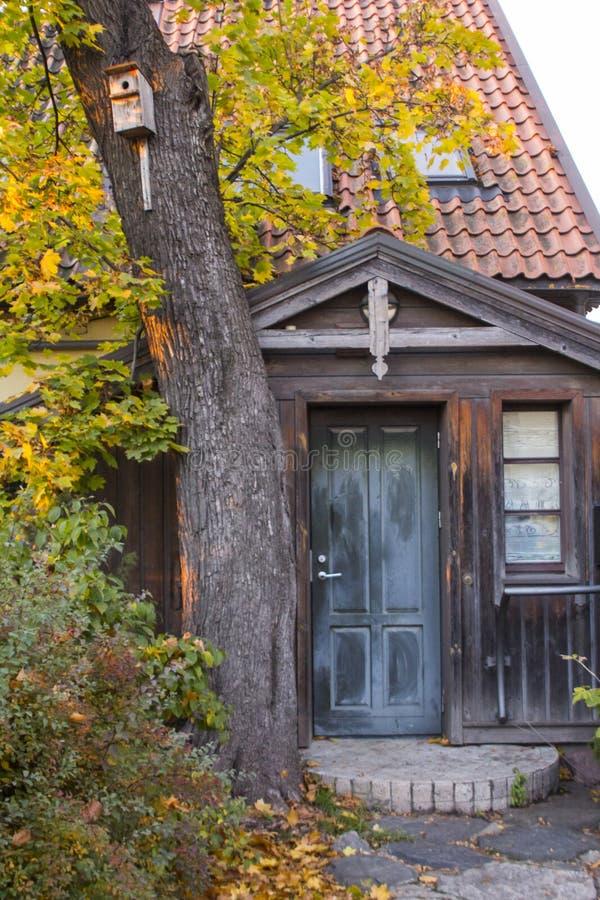 Ιστορικές ξύλινες πόρτες στο παλαιό σπίτι σε Vilnius Λιθουανία στοκ φωτογραφίες με δικαίωμα ελεύθερης χρήσης