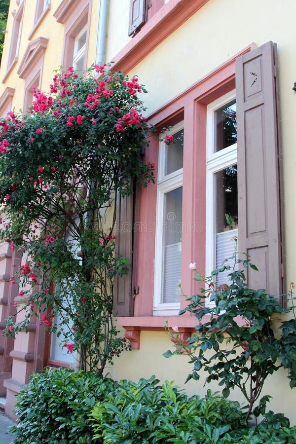 Ιστορική αρχιτεκτονική στη Χαϋδελβέργη, Γερμανία στοκ φωτογραφίες με δικαίωμα ελεύθερης χρήσης
