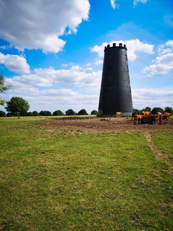 Ιστορικός μύλος στη Beverley στοκ εικόνα