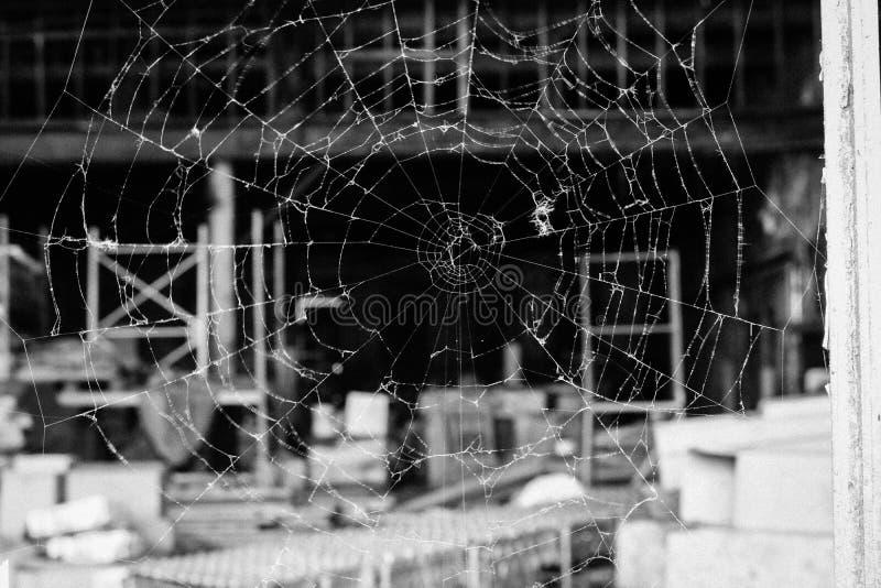 Ιστός αραχνών που κοιτάζει μέσω ενός σπασμένου παραθύρου στοκ εικόνες με δικαίωμα ελεύθερης χρήσης