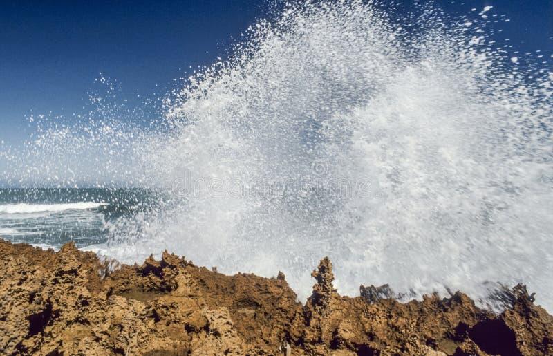 Ισχυρή κυματωγή που συντρίβει πέρα από την επικίνδυνη ακτή στοκ εικόνες