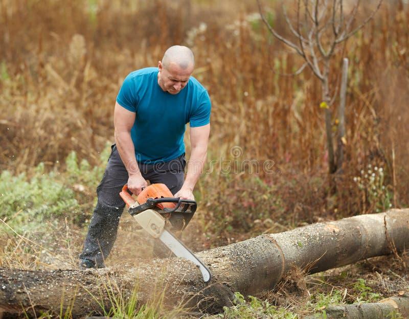 Ισχυρός αγρότης με το αλυσιδοπρίονο στοκ εικόνες