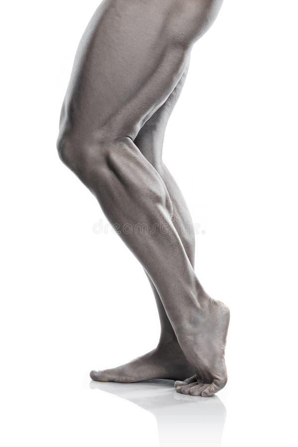 Ισχυρός αθλητικός πρότυπος κορμός ικανότητας ατόμων που παρουσιάζει πόδια στοκ εικόνες