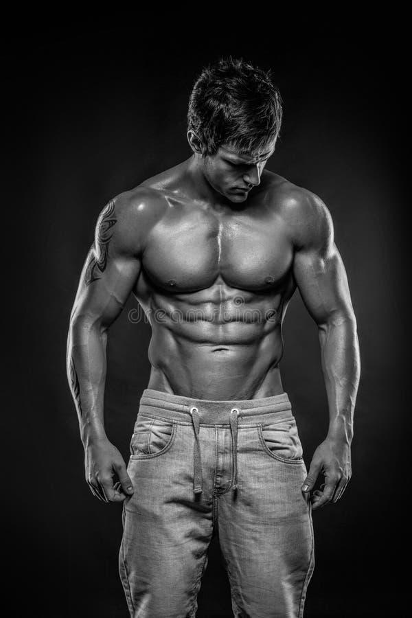 Ισχυρός αθλητικός πρότυπος κορμός ικανότητας ατόμων που παρουσιάζει ABS έξι πακέτων στοκ φωτογραφίες με δικαίωμα ελεύθερης χρήσης
