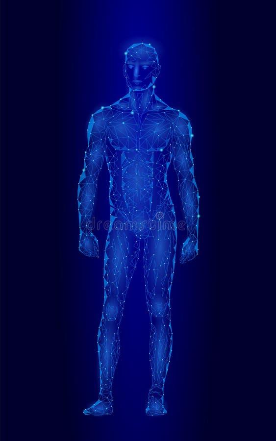 Ισχυρό υγιές ανθρώπινο σώμα που στέκεται το τρισδιάστατο πρότυπο χαμηλό πολυ σχέδιο Αρρενωπός ρομπότ αθλητισμός ικανότητας ατόμων απεικόνιση αποθεμάτων