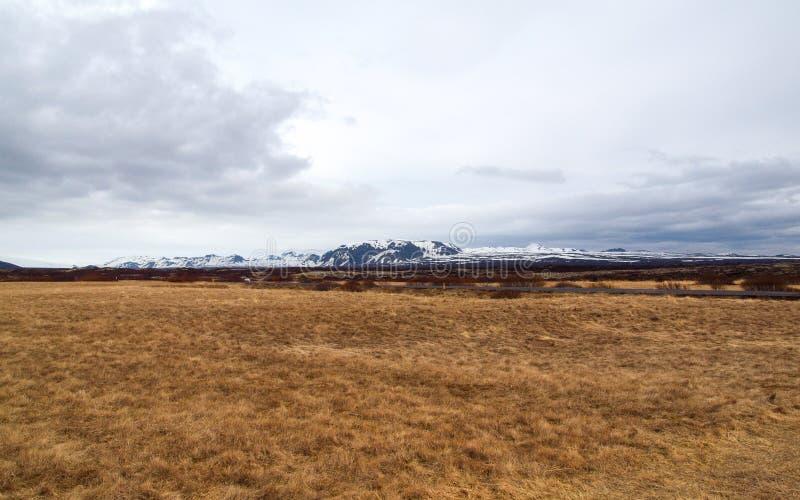 Ισλανδία, το Μάιο του 2015: λιβάδι landescape στην Ισλανδία στοκ φωτογραφία με δικαίωμα ελεύθερης χρήσης