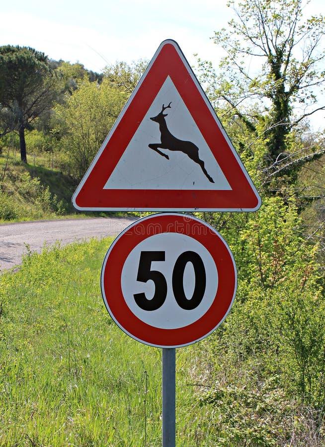 Ιταλία: Πέρασμα και όριο ταχύτητας ζώων κινδύνου οδικών σημάτων στοκ φωτογραφία με δικαίωμα ελεύθερης χρήσης