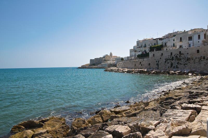 Ιταλία Πούλια vieste στοκ εικόνα με δικαίωμα ελεύθερης χρήσης