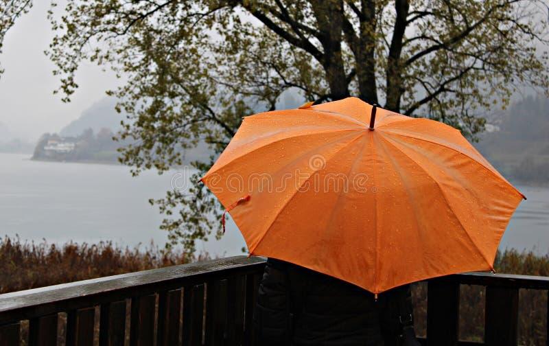 Ιταλία, Trentino: Πορτοκαλιά ομπρέλα κατά τη διάρκεια μιας βροχερής ημέρας στοκ εικόνα με δικαίωμα ελεύθερης χρήσης