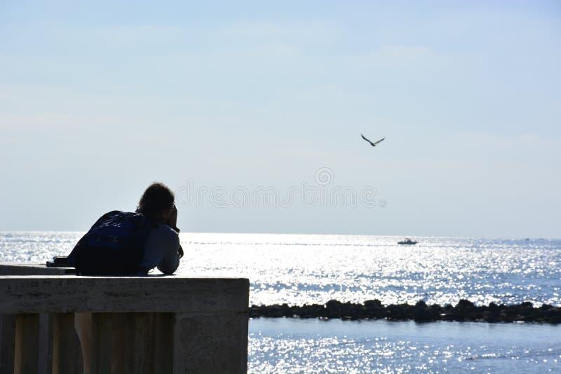 ιταλικά seagulls πέρα από τη θάλασσα στοκ φωτογραφίες