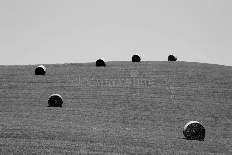Ιταλικό πανόραμα επαρχίας Στρογγυλά δέματα στον τομέα σίτου στοκ φωτογραφία με δικαίωμα ελεύθερης χρήσης
