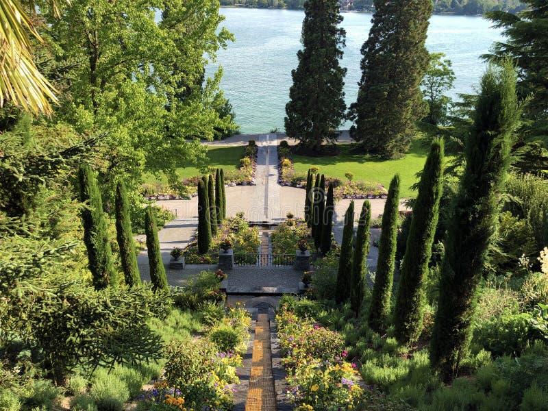 Ιταλικό Floral καταρράκτης νερού ή νησί Mainau λουλουδιών Italienische blumen-Wassertreppe στη λίμνη Constance ή τον κύβο Blumeni στοκ εικόνες