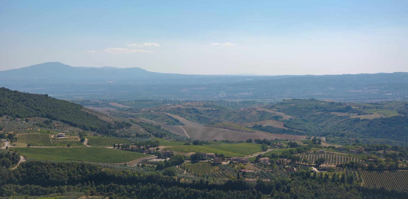 Ιταλικά landscpae με τους τομείς και τα δέντρα στοκ εικόνες με δικαίωμα ελεύθερης χρήσης