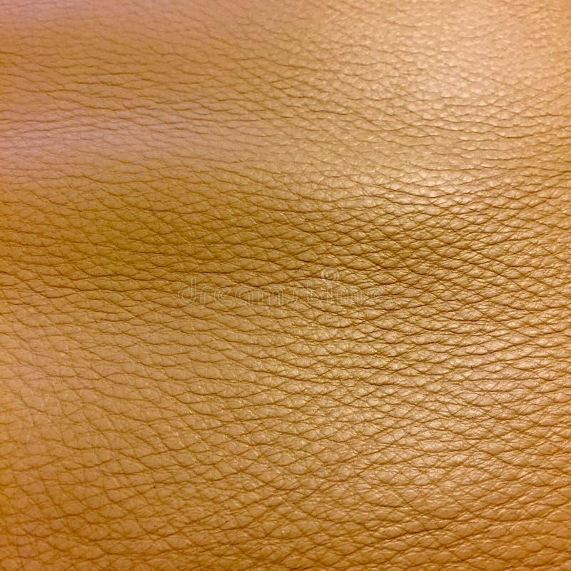 Ιταλικό δέρμα στοκ εικόνες με δικαίωμα ελεύθερης χρήσης