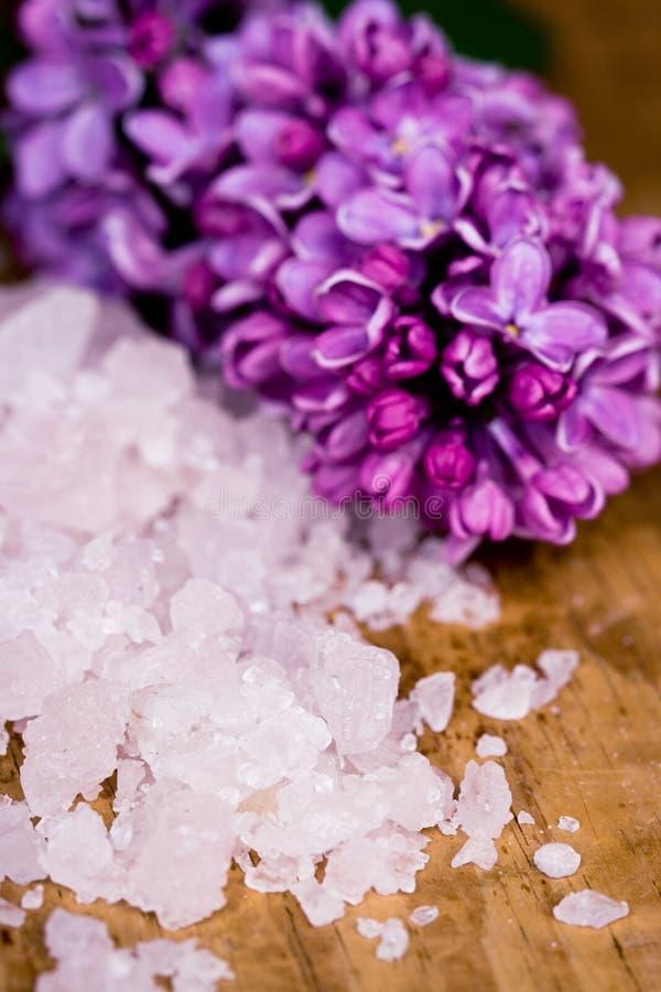 ιώδες άλας λουλουδιών &l στοκ εικόνα