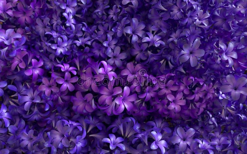 Ιώδες υπόβαθρο λουλουδιών ανθών ιώδες στοκ εικόνα με δικαίωμα ελεύθερης χρήσης