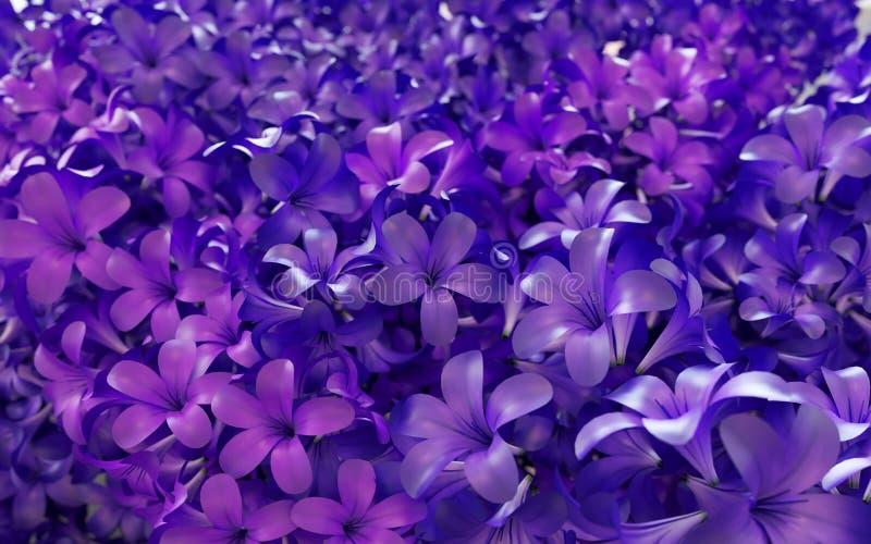 Ιώδες ιώδες υπόβαθρο λουλουδιών στοκ εικόνες