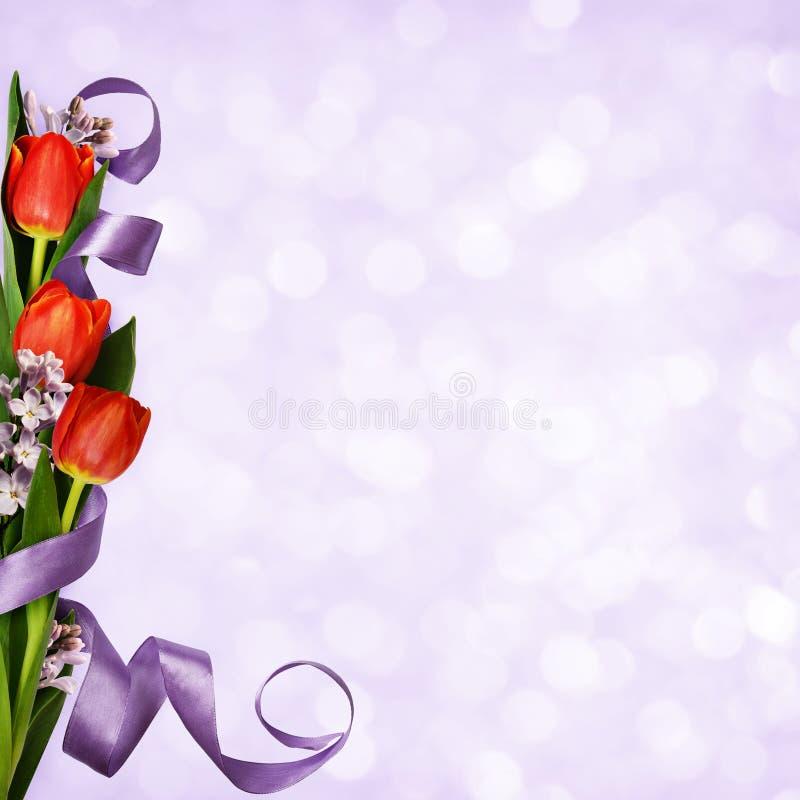 Ιώδες υπόβαθρο με τις κόκκινες τουλίπες, τα ιώδεις λουλούδια και την κορδέλλα μεταξιού στοκ εικόνα με δικαίωμα ελεύθερης χρήσης
