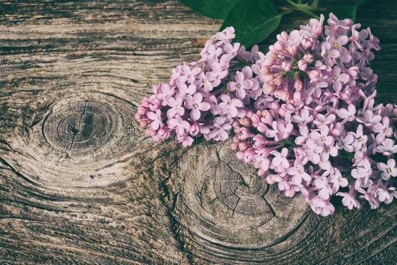 Ιώδης ανθοδέσμη λουλουδιών στο παλαιό ξύλινο υπόβαθρο σανίδων στοκ φωτογραφίες