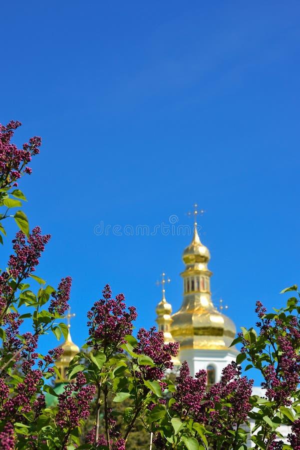 Ιώδη λουλούδια στο backround ορθόδοξου Ñ  hurch στοκ εικόνες με δικαίωμα ελεύθερης χρήσης