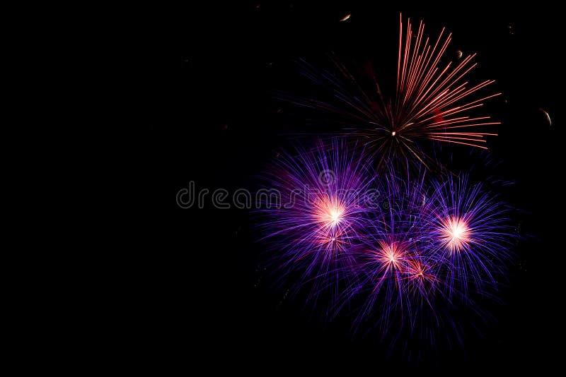 Ιώδη πυροτεχνήματα στο μαύρο υπόβαθρο ουρανού με το copyspace στοκ εικόνες με δικαίωμα ελεύθερης χρήσης