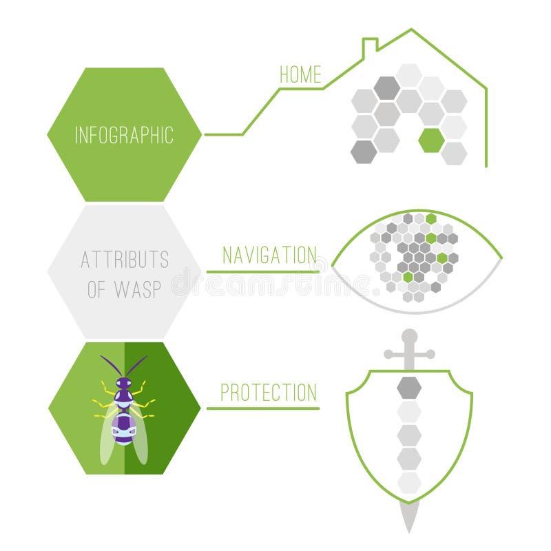 Ιδιότητες Infographic της σφήκας επίσης corel σύρετε το διάνυσμα απεικόνισης διανυσματική απεικόνιση