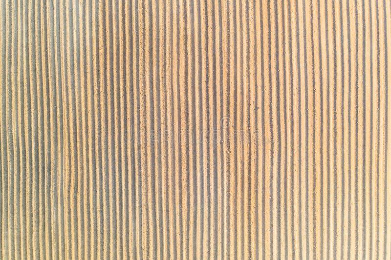 Κάθετες γραμμές στην άμμο, έννοια σύστασης Σχέδιο καλλιέργειας στοκ φωτογραφία