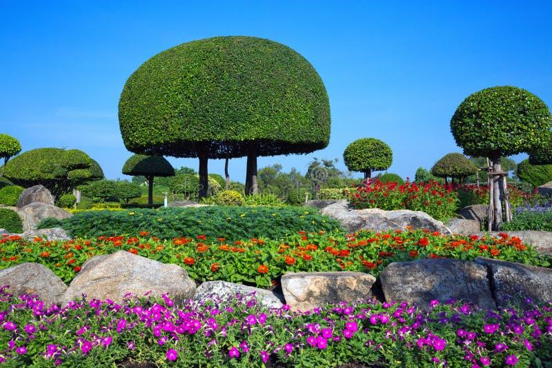 Κάθετη διακόσμηση κήπων στην αρμονία με τη φύση στοκ εικόνες με δικαίωμα ελεύθερης χρήσης