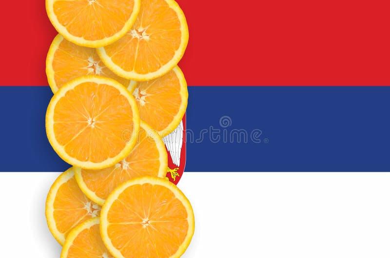 Κάθετη σειρά φετών σημαιών της Σερβίας και εσπεριδοειδούς στοκ εικόνα