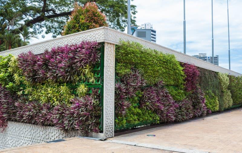 Κάθετος κήπος στο κέντρο της Κουάλα Λουμπούρ στοκ εικόνα