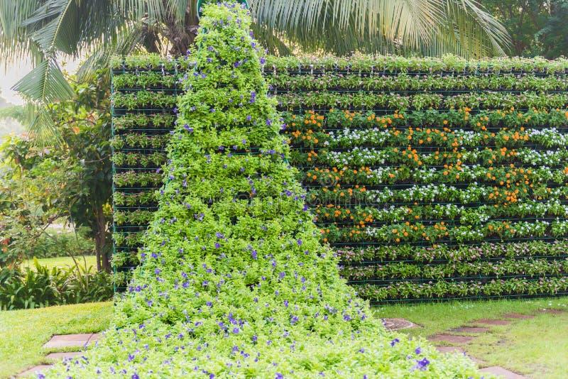 Κάθετος κήπος τοίχων λουλουδιών στοκ εικόνες με δικαίωμα ελεύθερης χρήσης