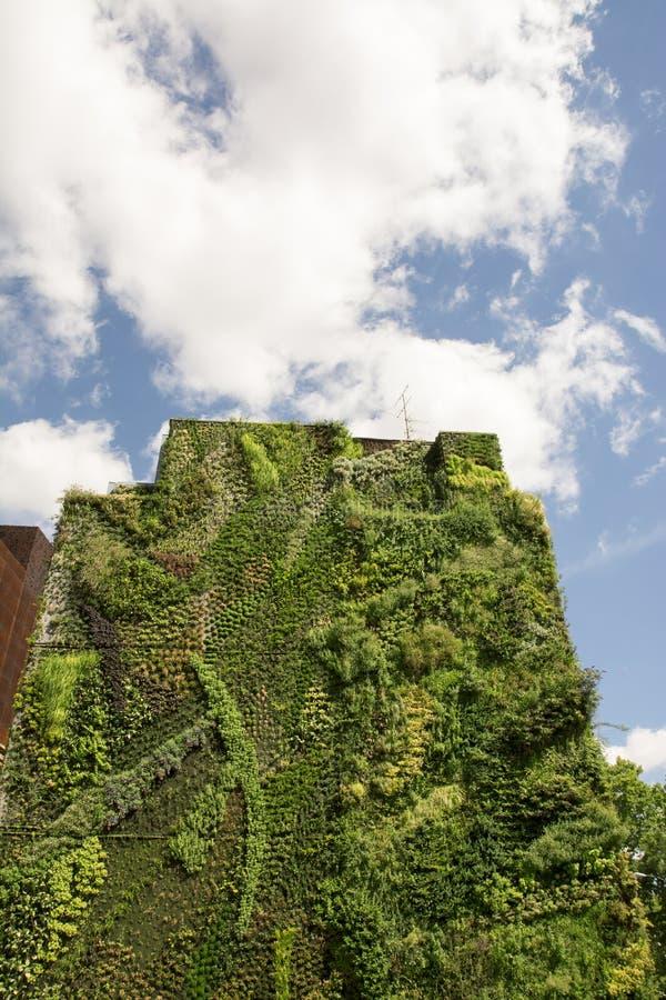 Κάθετος κήπος τοίχων στη Μαδρίτη, Ισπανία στοκ εικόνες με δικαίωμα ελεύθερης χρήσης