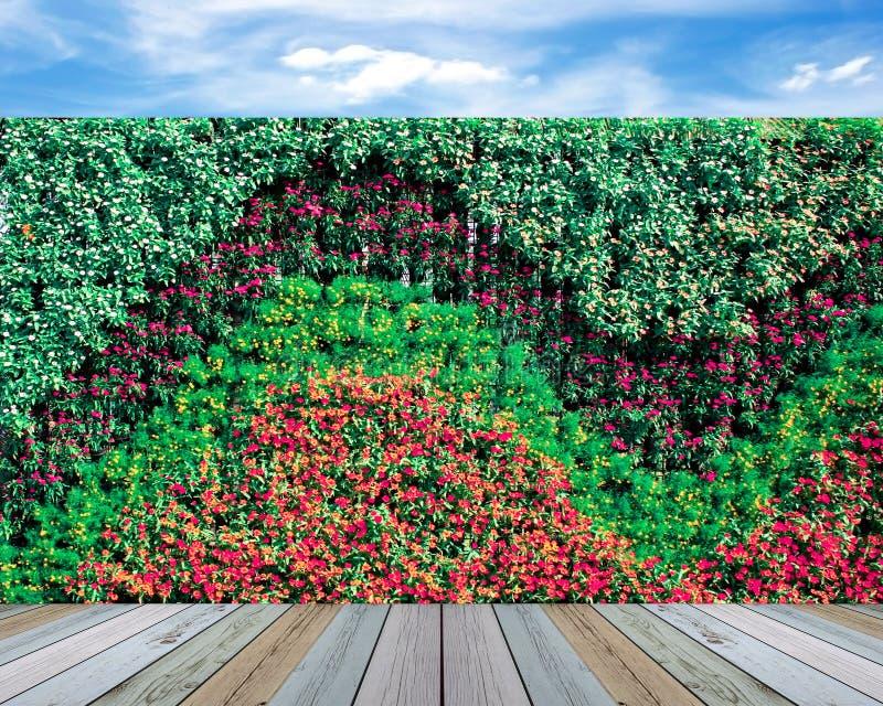 Κάθετος κήπος τοίχων στοκ φωτογραφία με δικαίωμα ελεύθερης χρήσης