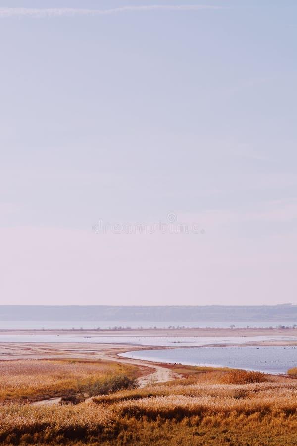 Κάθετος πυροβολισμός των απέραντων εδαφών που καλύπτονται από τη στεγνωμένη χλόη με τη θάλασσα στο υπόβαθρο στο wintertime στοκ εικόνες