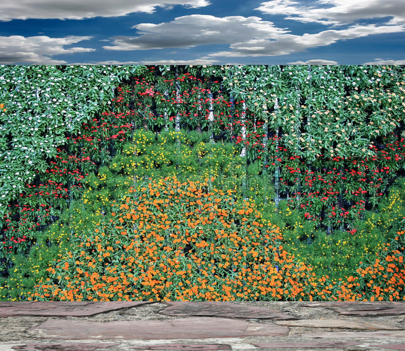 Κάθετος τοίχος κήπων λουλουδιών στοκ φωτογραφίες