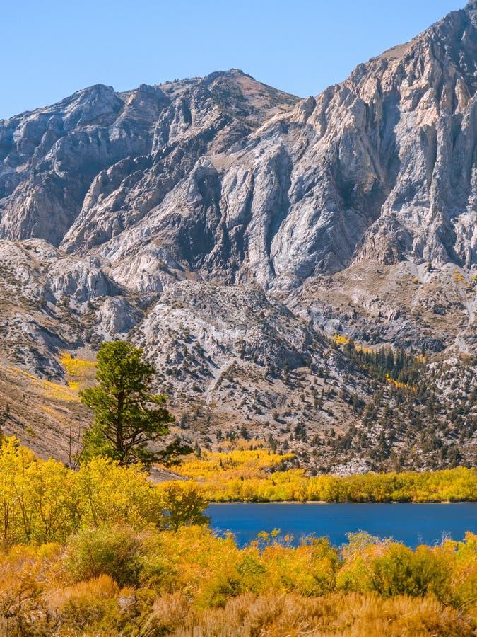 Κάθετο τοπίο βουνών με τα φωτεινά χρώματα φθινοπώρου στο καλύτερό τους στοκ φωτογραφίες