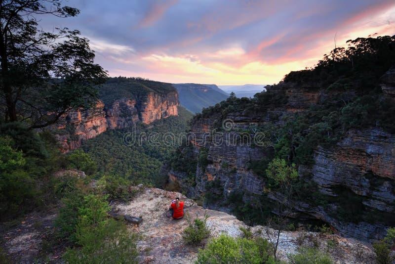 Κάθισμα στην άκρη των μπλε βουνών Αυστραλία αγριοτήτων στοκ εικόνες