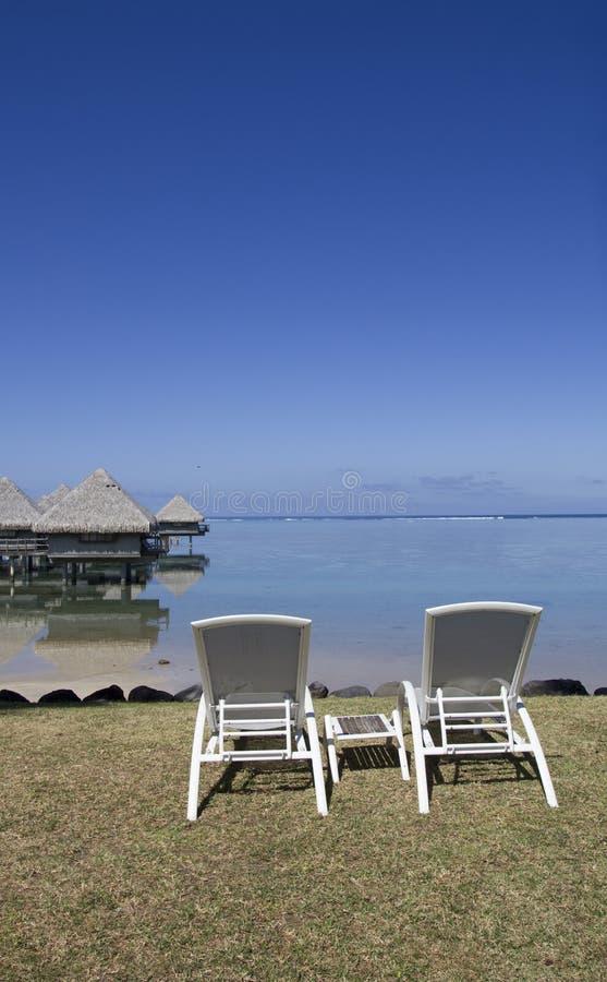 Κάθισμα στην Πολυνησία στοκ εικόνες